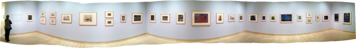 Panorma of exhibition and Satch viewing it